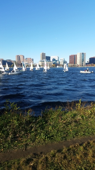 sailboats-on-the-charles