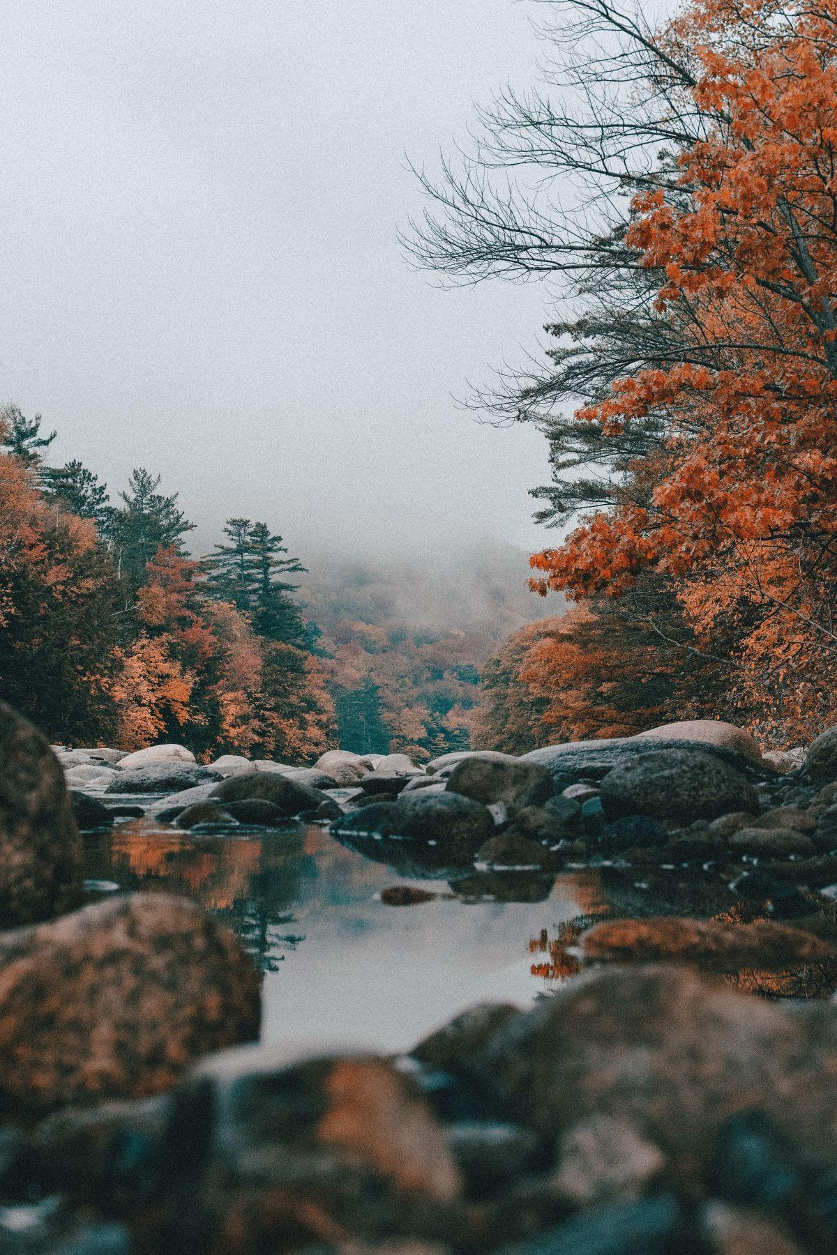fall_water